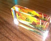 Μοναδική φωτογραφία εκτυπωμένη σε plexiglass